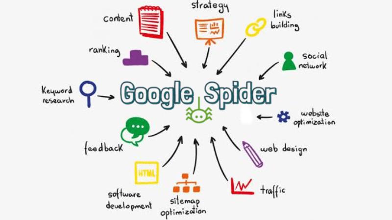 Apa Saja Yang Tidak Disukai Oleh Google Spider?
